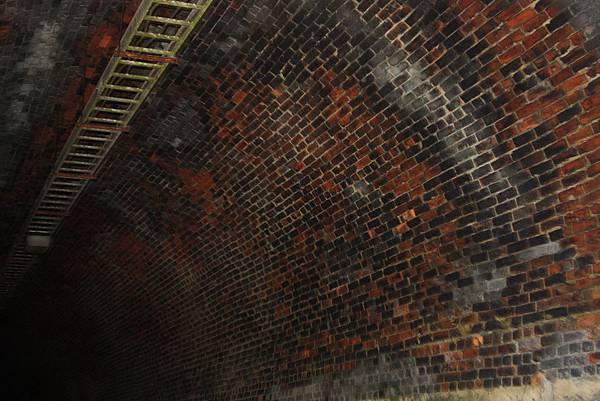 一小段舊鐵道遺跡和幽暗隧道 (14).JPG