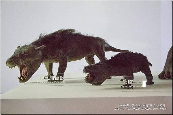 恐龍展 (50)