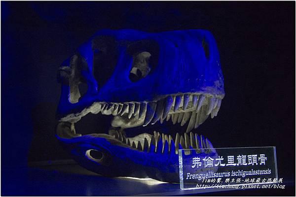 恐龍展 (115)