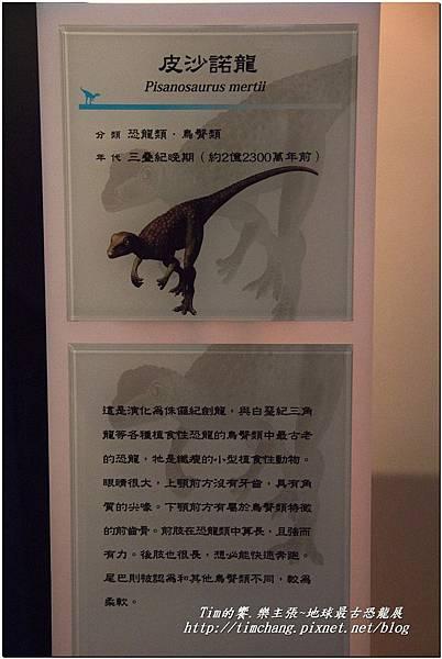 恐龍展 (128)