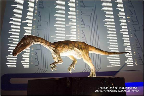 恐龍展 (134)