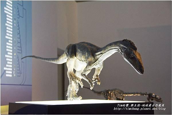 恐龍展 (139)