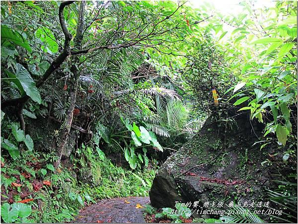 登龜山島 (395)