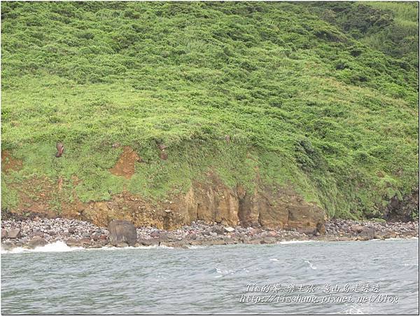 登龜山島 (494)
