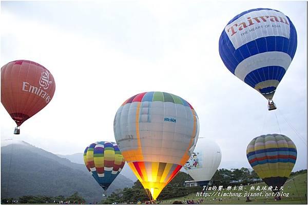 鹿野高台之熱氣球 (176)