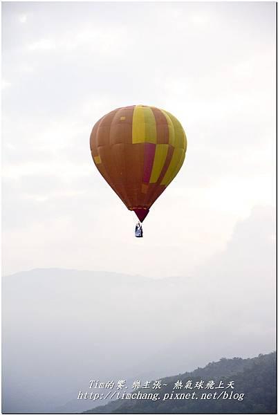 鹿野高台之熱氣球 (132)