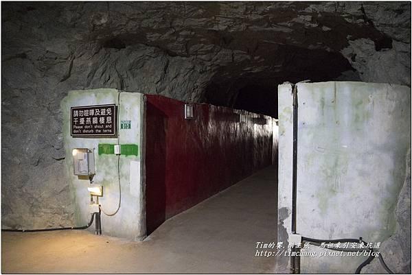 東引安東坑道 (51)