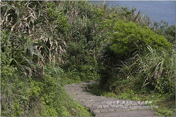 燭臺雙嶼 (60)