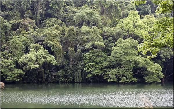 後慈湖景物 (6)
