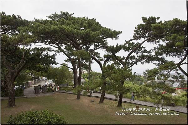 松園別館 (159)