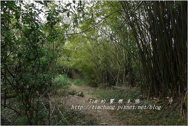平菁路93巷 (20).jpg