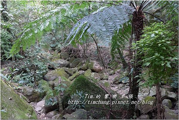 平菁路93巷 (39).jpg