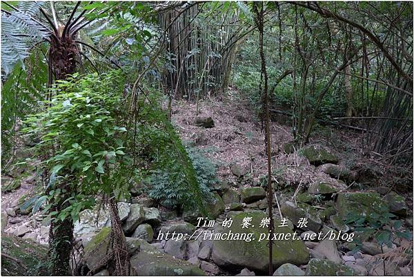 平菁路93巷 (41).jpg