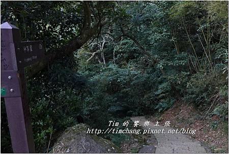 往桃仔腳 (4).jpg