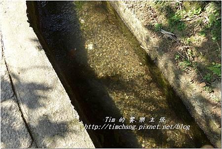 第一層古圳 (10).jpg