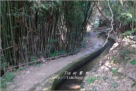 第一層古圳 (43).jpg