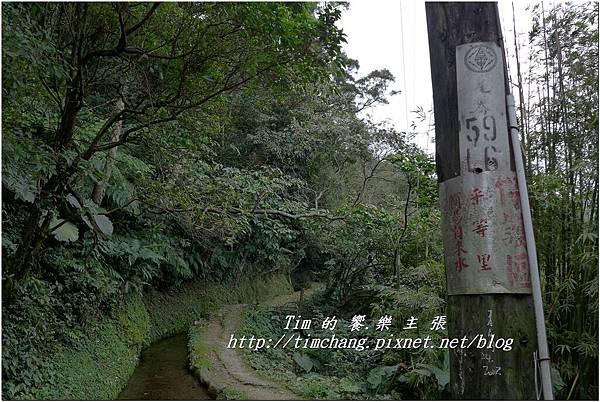 最上層古圳 (10).jpg