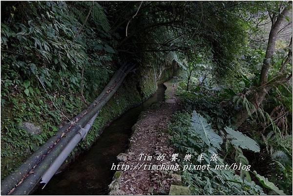 最上層古圳 (25).jpg