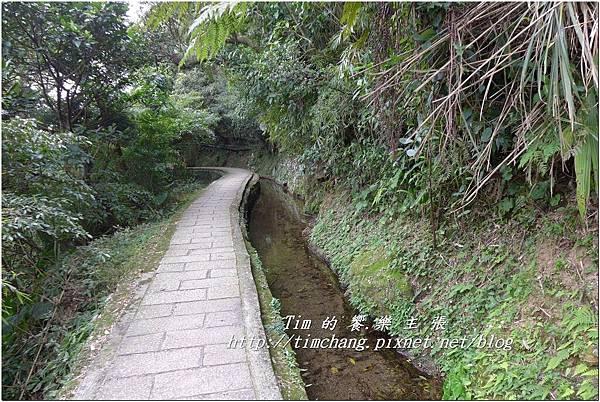 最上層古圳 (42).jpg