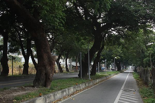 0428第3天南迴公路 (41).JPG