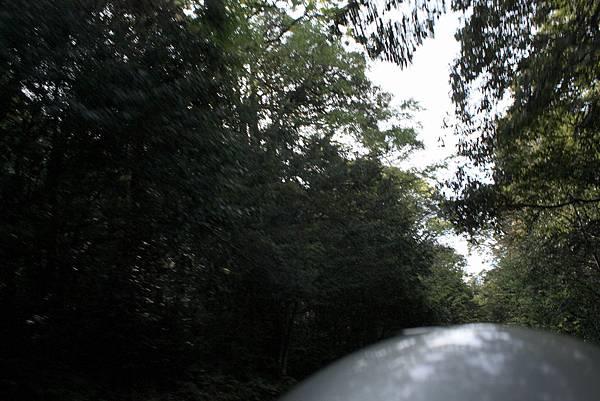 第二天(一路往太魯閣向前騎) (17).JPG