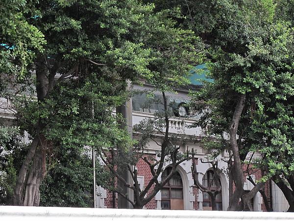 2010台南處處皆驚奇  (174).JPG