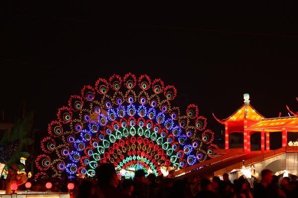 2011台灣燈會在苗栗 (153).JPG
