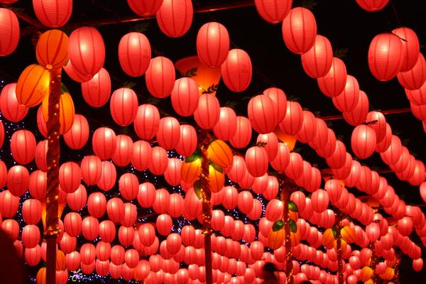 2011台灣燈會在苗栗 (156).JPG