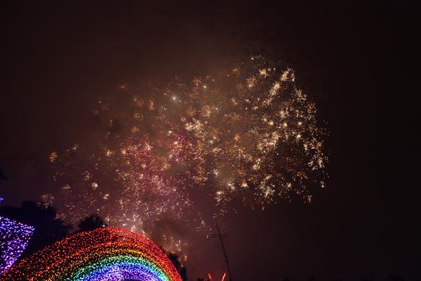 2011台灣燈會在苗栗 (181).JPG
