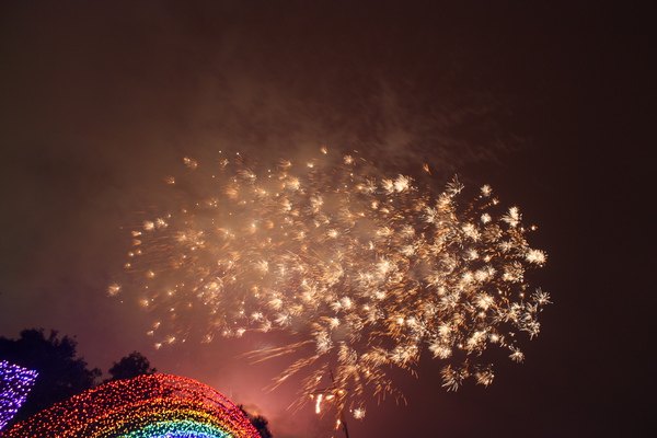 2011台灣燈會在苗栗 (184).JPG
