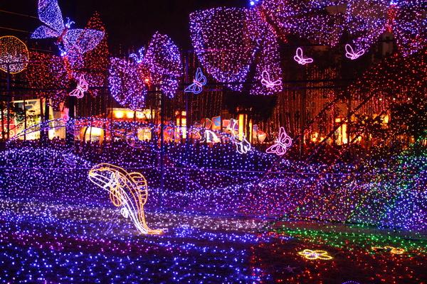 2011台灣燈會在苗栗 (510).JPG
