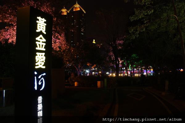 愛河夜景 (51).JPG