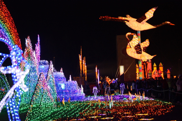 2011台灣燈會在苗栗 (519).JPG