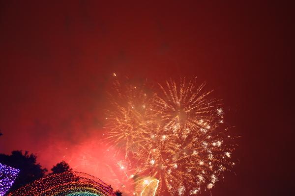 2011台灣燈會在苗栗 (185).JPG