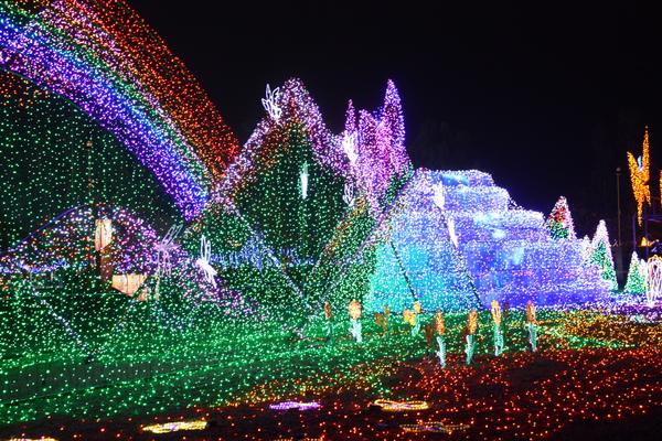 2011台灣燈會在苗栗 (515).JPG