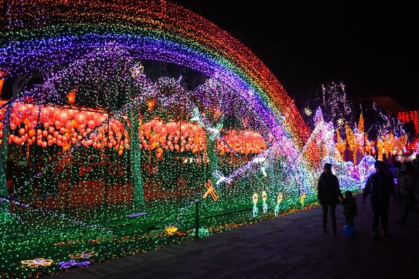 2011台灣燈會在苗栗 (502).JPG