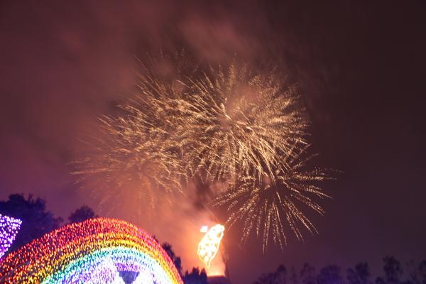 2011台灣燈會在苗栗 (197).JPG