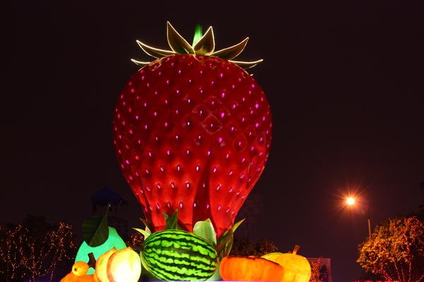 2011台灣燈會在苗栗 (125).JPG