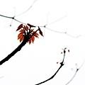littletrip0326-31.jpg