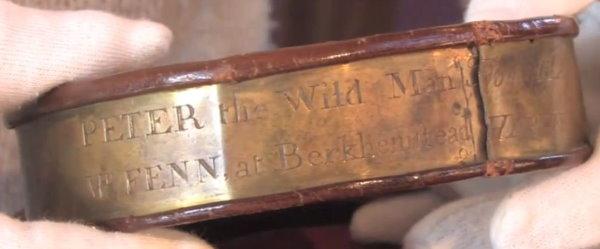 2013 Mama 014 Wild Peter collar