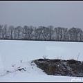 SL冬之濕原號