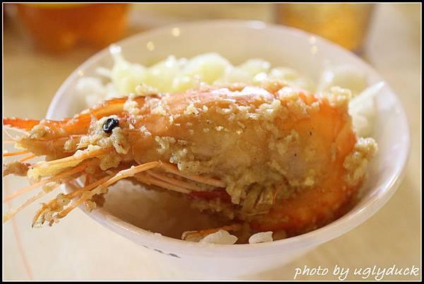 新_黃金海岸活蝦