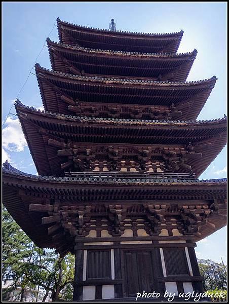 IMAG4199_奈良_興福寺