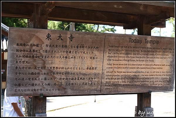 IMG_1324_奈良_東大寺