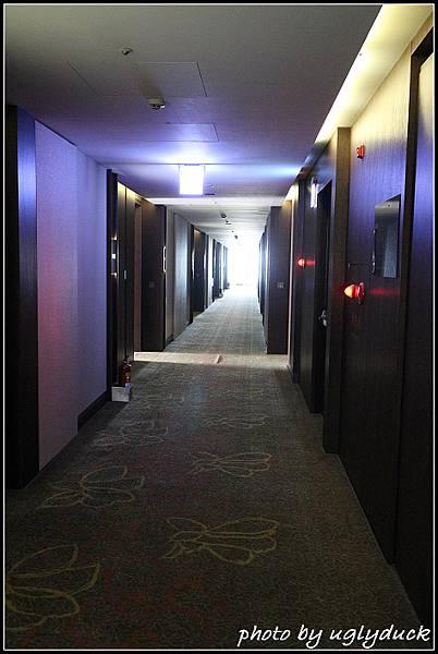 金湖飯店IMG_3672