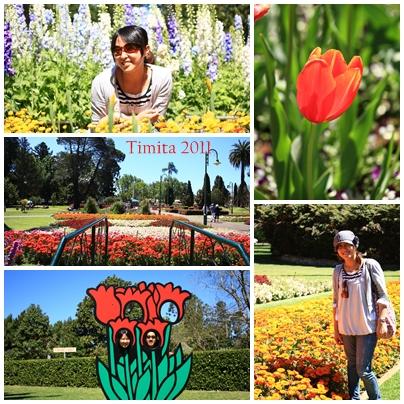 Queens Park Gardens.jpg