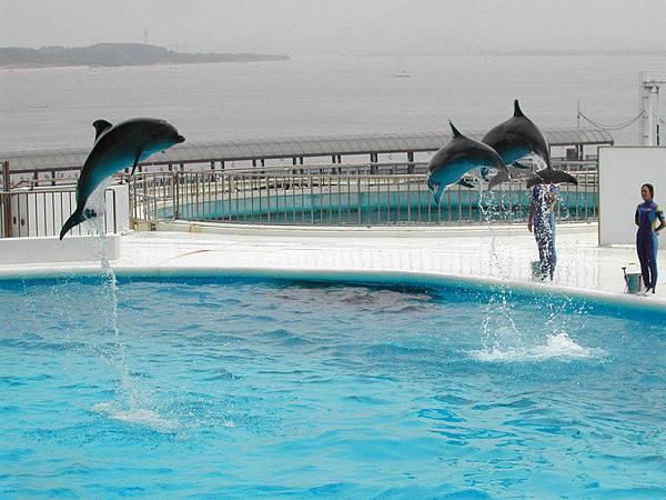Japan 海洋公園
