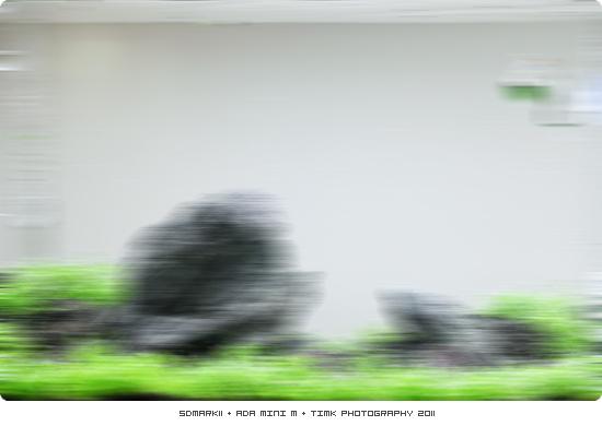 P_A018.jpg