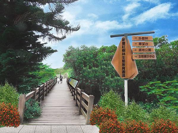 新豐紅樹林-1.jpg
