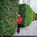 新生園區  花牆